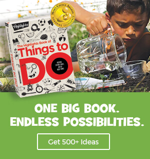 Get over 500 ideas in Highlights Book of Things to Do!