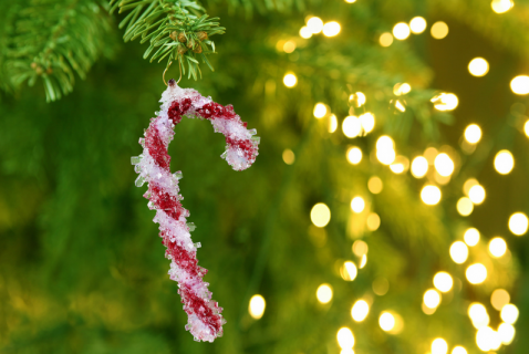 Rock candy with a twist! Help your kids create sparkly rock-candy ornaments for the holidays.