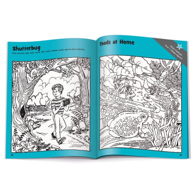 Shutterbug puzzle and Toads at Home puzzle