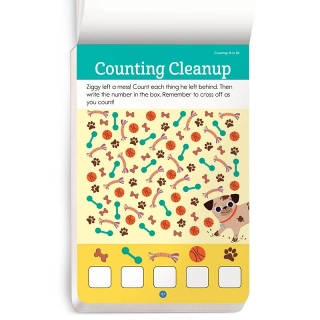 A mix of items to count
